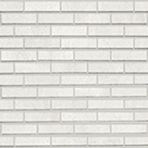 Powder Bone Brick